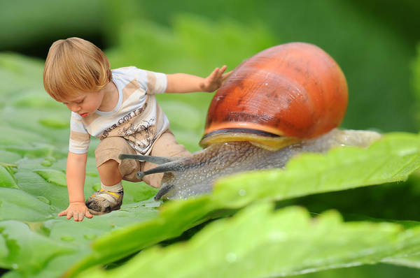 Young Boy Photograph - Cute Tiny Boy Playing With A Snail by Jaroslaw Grudzinski