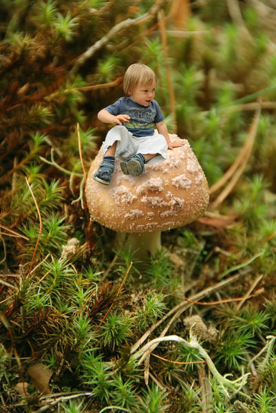 Young Boy Photograph - Cute Tiny Boy Sitting On A Mushroom by Jaroslaw Grudzinski