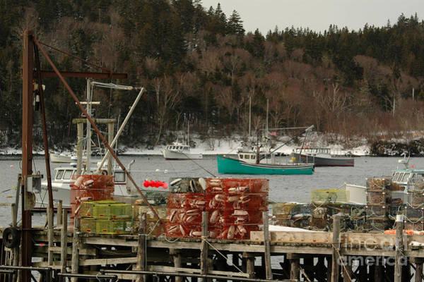 Photograph - Cutler Harbor by Alana Ranney