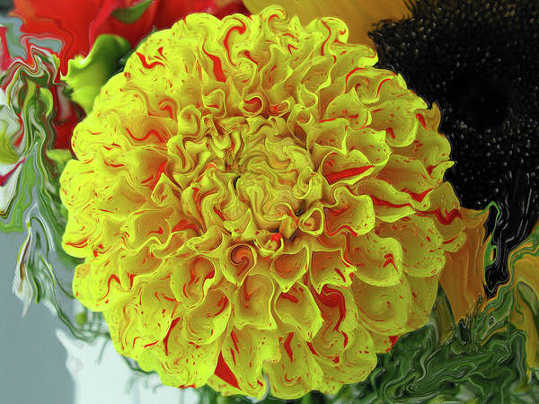 Liquify Photograph - Dahlia - Yellow With Red Speckles by Kathy Moll