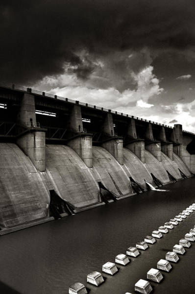 Photograph - Dam-it by Brian Duram