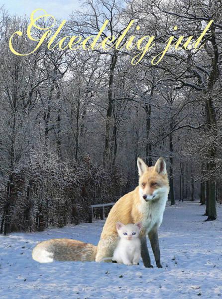 Mixed Media - Danish Winter Fox  by Eric Kempson