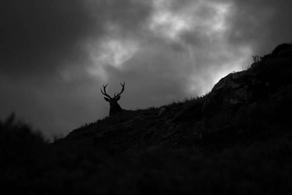 Photograph - Dark And Stormy by Gavin Macrae