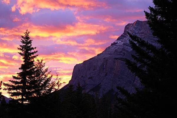 Wall Art - Photograph - Dawn At Tunnel Mountain by Larry Ricker