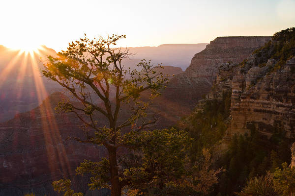 Photograph - Daybreak At Mather Point by Adam Pender