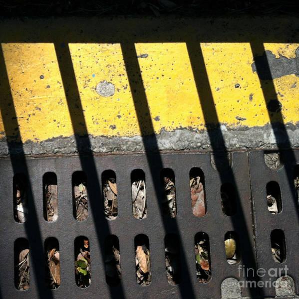 Photograph - Db 7 by Marlene Burns