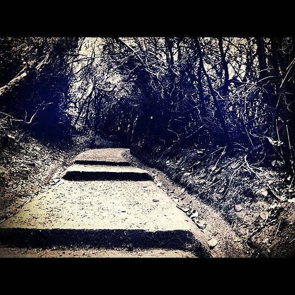 Death Wall Art - Photograph - #death #road #beautiful #nature by German Henry