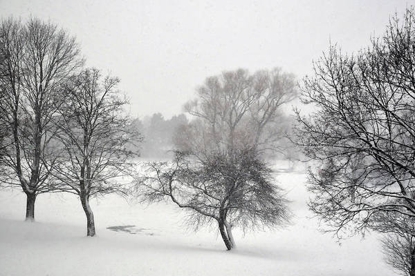 Photograph - December  by Dragan Kudjerski