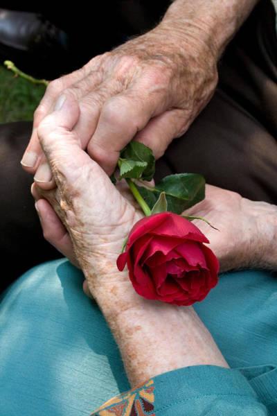 Photograph - Deep Abiding Love by Larry Landolfi
