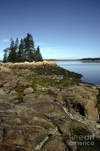 Wall Art - Photograph - Deer Isle Granite Shore by Thomas R Fletcher