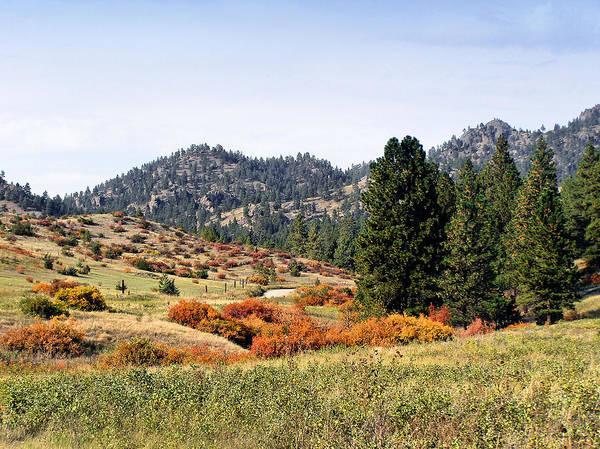 Photograph - Deerborn Fall by Susan Kinney