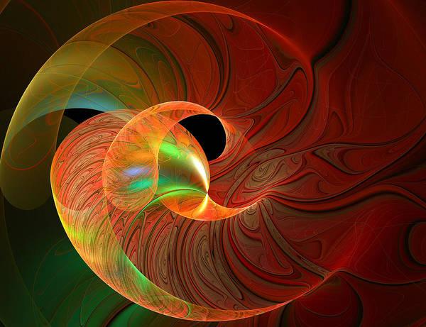 Digital Art - Delicate Spiral by Amanda Moore
