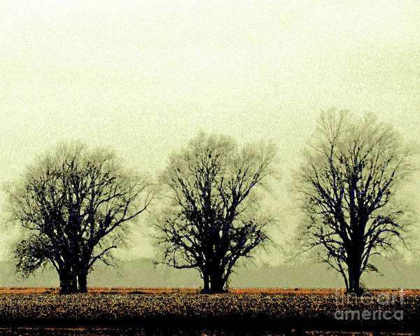 Digital Art - Delta Dust by Lizi Beard-Ward