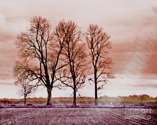 Digital Art - Delta View by Lizi Beard-Ward