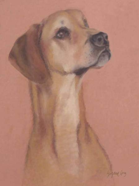 Pastel - Demo The Hero Dog by Suzanne Cerny