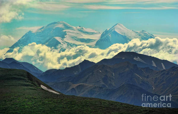 Photograph - Denali by Heather Applegate