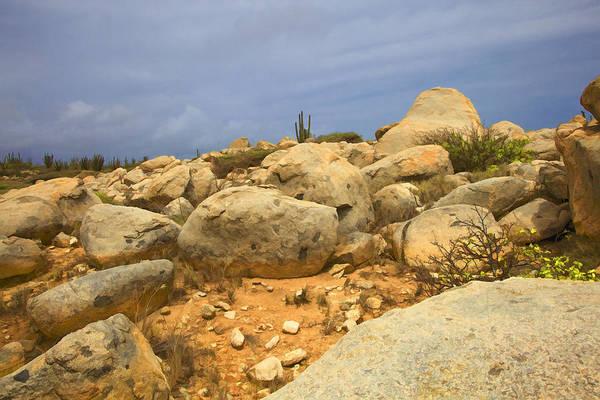 Photograph - Desert Boulders Of Aruba by David Letts
