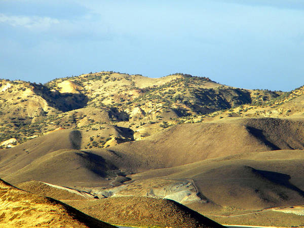 Photograph - Desert Heights West Of Reno Nevada by Frank Wilson