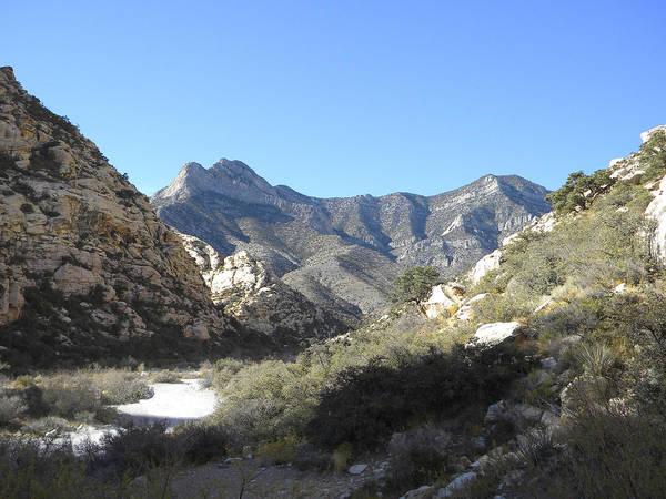 Photograph - Desert Trail by Frank Wilson