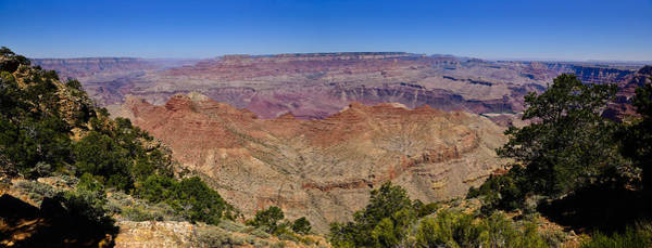 Photograph - Desert View Panorama by Greg Norrell