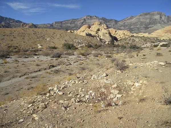 Photograph - Desert Washout by Frank Wilson