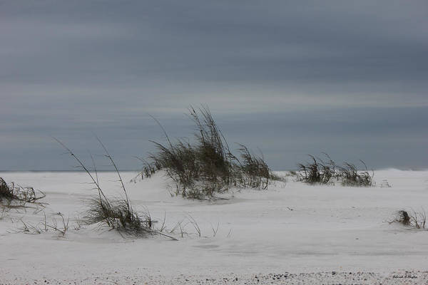 Photograph - Deserted Beach by Deborah Hughes