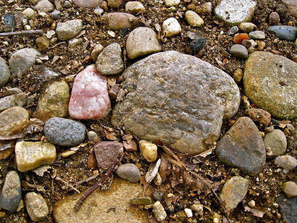 Photograph - Designs By Nature - Fp3 - Rocks by Felix Zapata