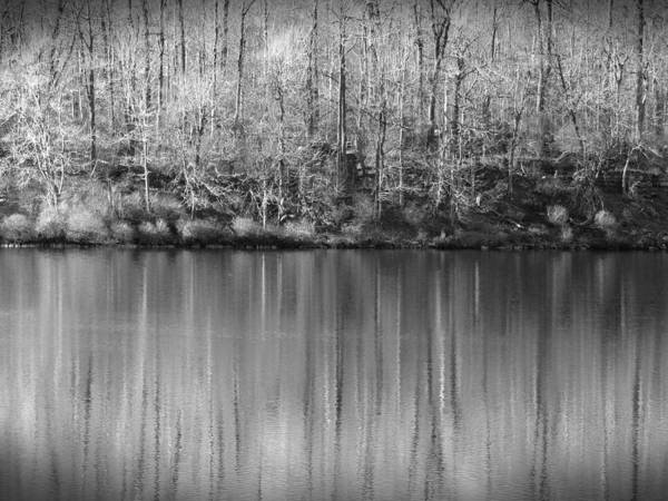 Photograph - Desolate Splendor Bw by David Dehner