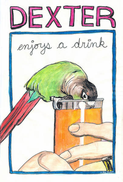 Drawing - Dexter Enjoys A Drink by Ana Tirolese