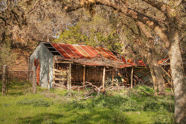 Photograph - Dilapidated Beauty  by Sarah Broadmeadow-Thomas