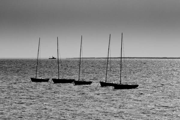 Leigh On Sea Photograph - Dinghies Moored Off Of Leigh On Sea Essex by David Pyatt