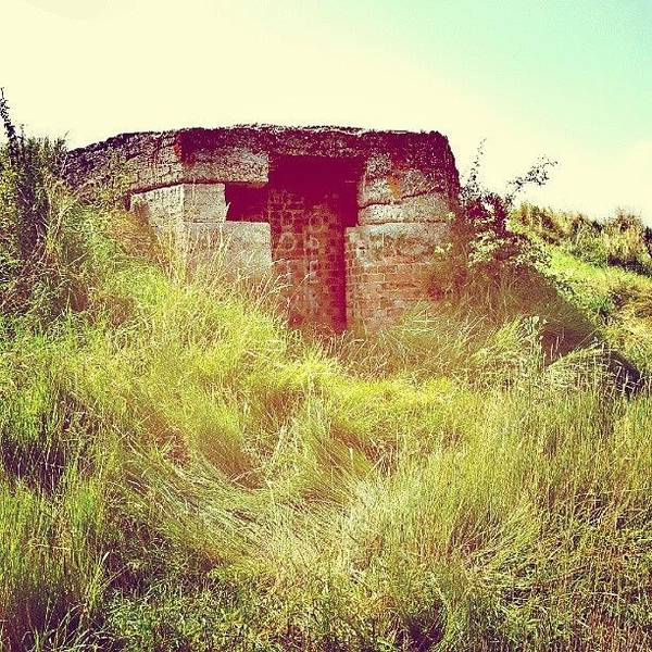 Norfolk Photograph - Disused World War 2 Bomb Shelter by Invisible Man