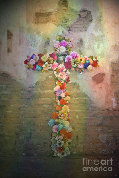 Photograph - Divine Beauty by Donna Greene