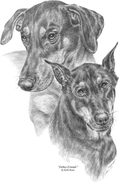 Drawing - Dober-friends - Doberman Pinscher Dogs Portrait by Kelli Swan