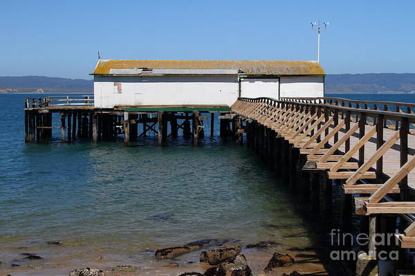 Pt. Reyes Photograph - Dock At Point Reyes Calfornia . 7d16073 by Wingsdomain Art and Photography