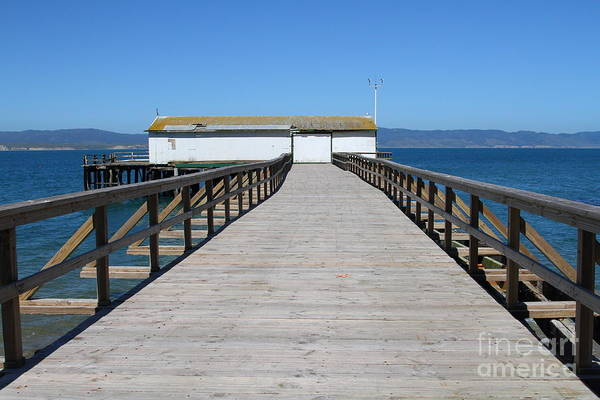 Wing Back Photograph - Dock At Point Reyes Calfornia . 7d16123 by Wingsdomain Art and Photography