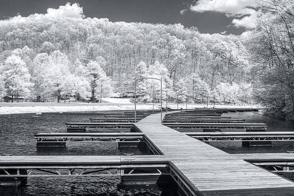 Photograph - Dock In Infrared by Mary Almond