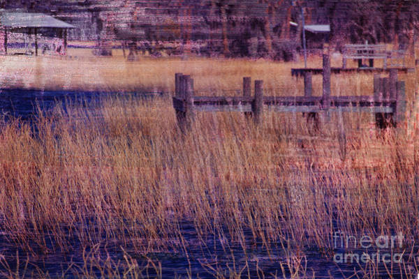 Photograph - Dock On The Bay by Bob Senesac