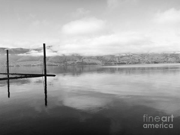 Photograph - Dock by Traci Cottingham