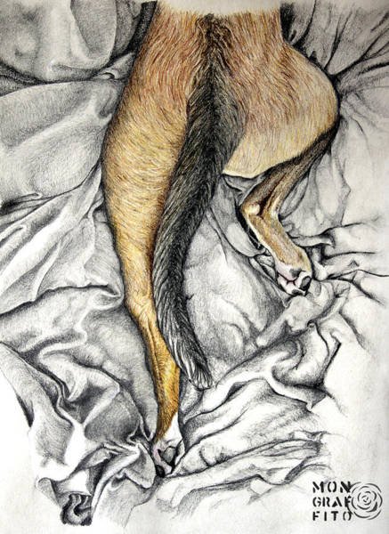German Shepherd Drawing - Dog-man by Mon Graffito