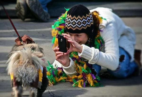 Photograph - Dog Portrait  by Jim Albritton