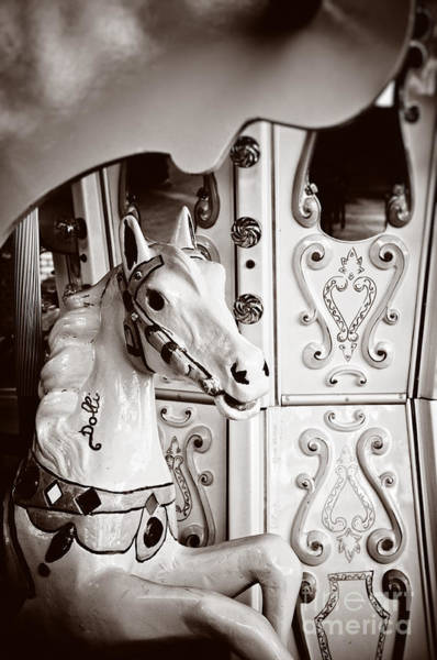 Photograph - Dolly The Carousel Horse by Silvia Ganora
