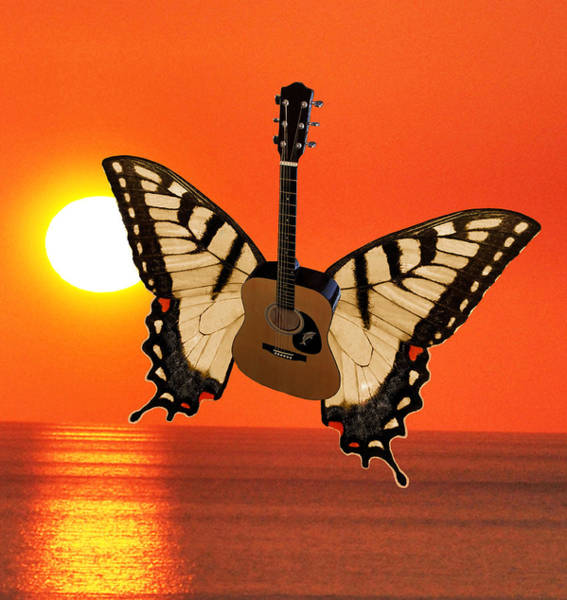 Butterfly On Flower Digital Art - Dont Let The Sun Go Down On Me  by Eric Kempson
