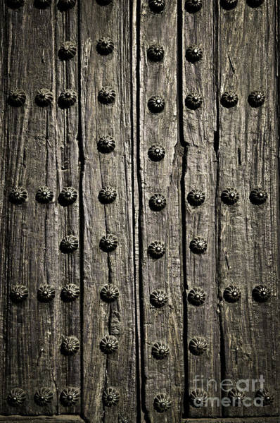 Wall Art - Photograph - Door Detail by Elena Elisseeva