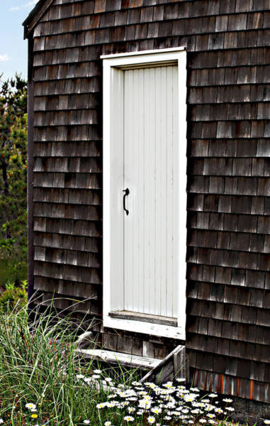 Photograph - Doorway With Daisies by Michelle Constantine