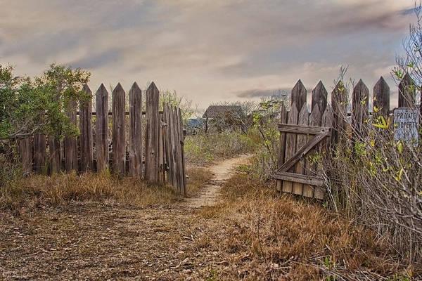 Sandra Anderson - Down a Garden Path