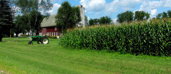 Photograph - Down On The Wisconsin Farm by Ms Judi