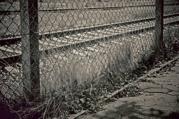 Chain Link Photograph - Down The Line by Odd Jeppesen