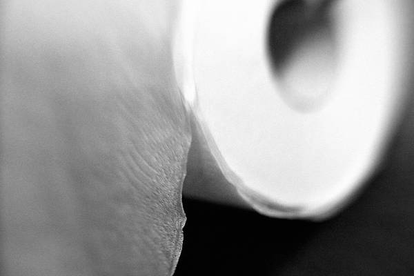 Toilet Photograph - Down To The Last Roll  by Trish Mistric