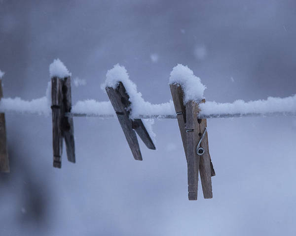 Snowstorm Wall Art - Photograph - Downtime by Susan Capuano